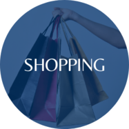 Link to slides on shopping scholar orientation