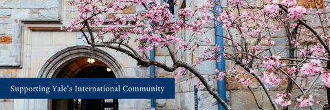 Supporting Yale's International Community