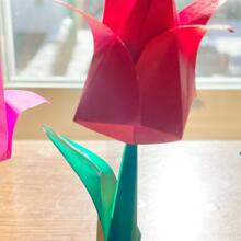 Event image for Learn the Art of Origami