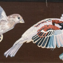 Event image for Self-Guided New Haven Street Art Walking Tour