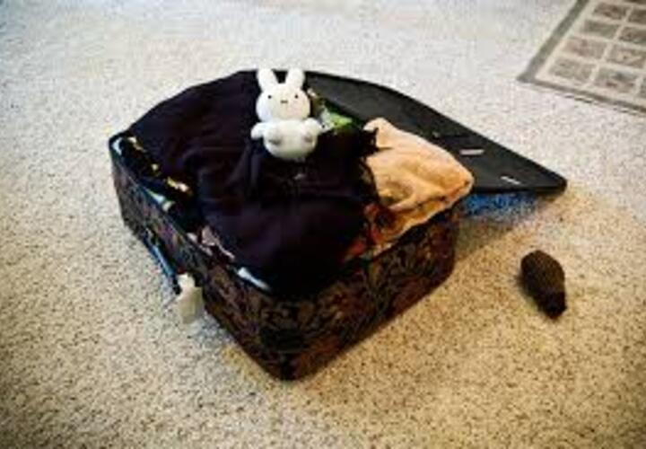 Packing your bags with a stuffed animal