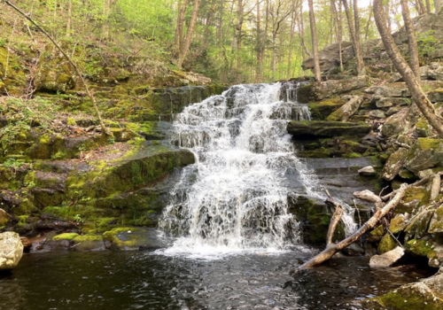 A waterfall in the CT forest